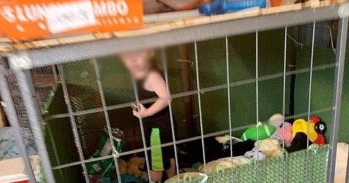 العثور على طفل صغير داخل قفص محاطا بالثعابين والفئران وإلقاء القبض على 3 أشخاص بأمريكا