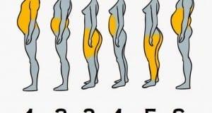 أي جزء من جسمكم أكثر سمنة ؟ إليكم السبب والحل ...
