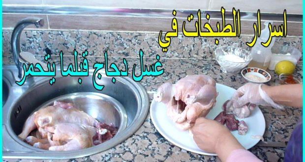 أسرار غسل الدجاج محمر الخاص بالأفراح و المناسبات كيجي فحال الدجاج البلدي