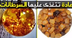 الدكتور محمد الفايد يحذر بشدة من هذه المادة التي تتغذى عليها السرطانات!