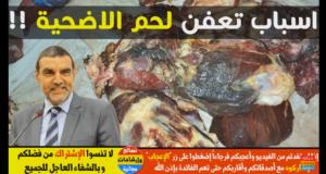 قبل عيد الأضحى الدكتور محمد فايد يحذر المغاربة من أسباب تعفن و اخضرار الأضحية لكي لا تتكرر مشكلة السنة الماضية
